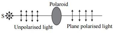 plan polarised light