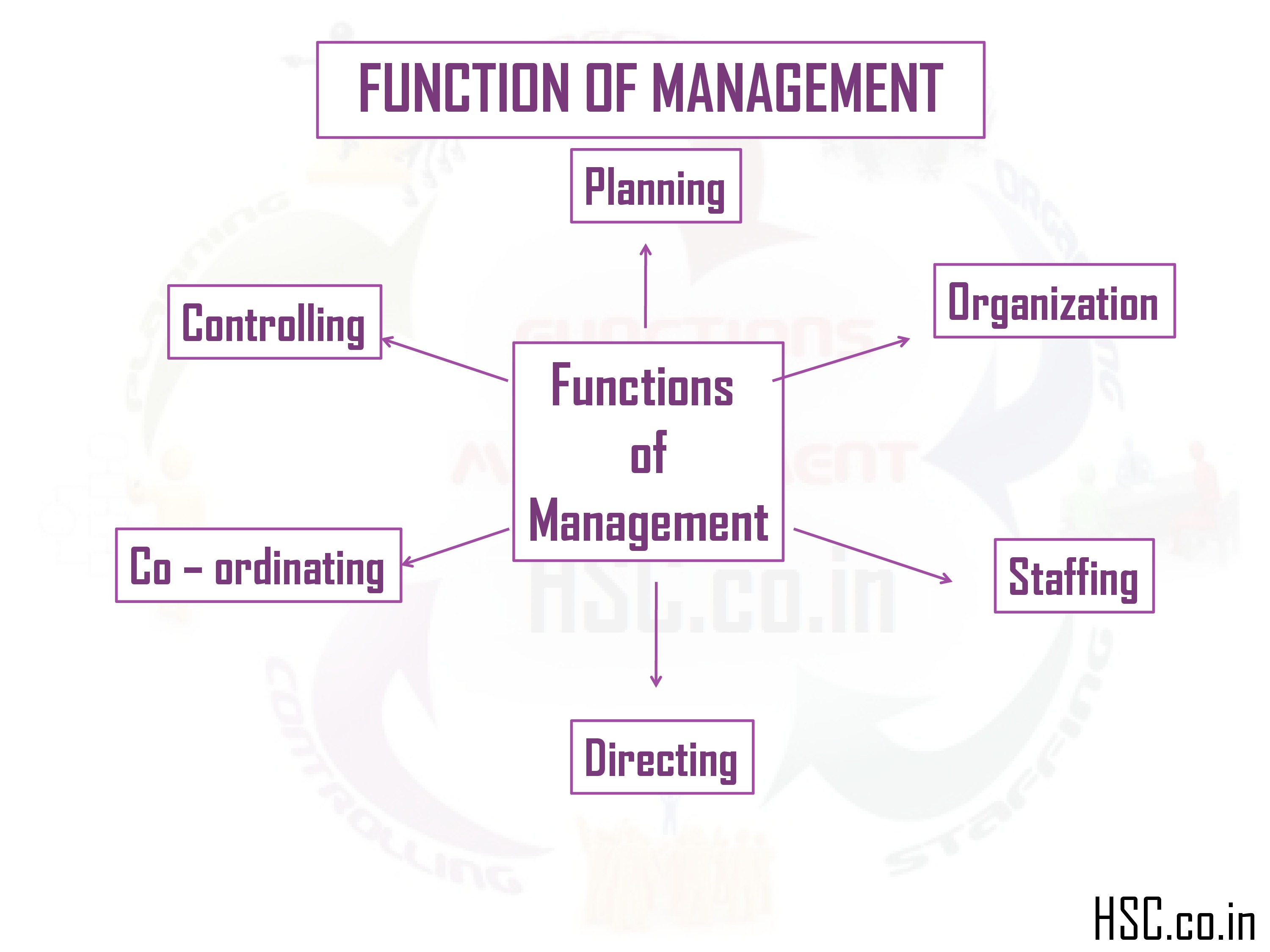 chart of function of management